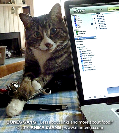 "Pack Lunch Links (image: Bones the cat says ""less about links, more about food"")"